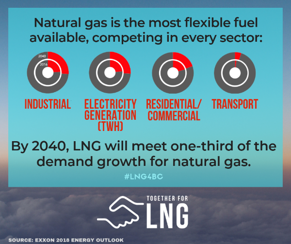 LNG is the most flexible fuel